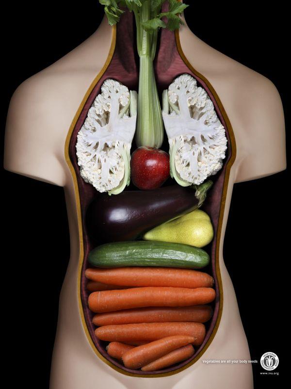 corps vegetarien